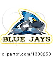 Clipart Of A Tough Blue Jay Bird Mascot Head With Text Royalty Free Vector Illustration