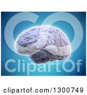 Clipart Of A 3d Glowing Human Brain Over Blue Royalty Free Illustration