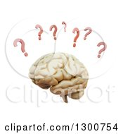 Clipart Of A 3d Human Brain With Red Question Marks On White Royalty Free Illustration