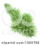 3d Grass Arrow Pointing Down Over White