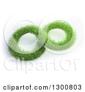 Clipart Of A 3d Grass Infinity Symbol On White Royalty Free Illustration by Mopic