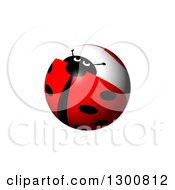 Clipart Of A Shiny Ladybug Globe On White Royalty Free Illustration by oboy
