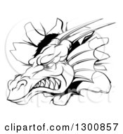 Clipart Of A Snarling Fierce Black And White Dragon Mascot Head Breaking Through A Wall Royalty Free Vector Illustration