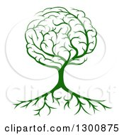 Clipart Of A Green Tree With A Brain Canopy And Roots Royalty Free Vector Illustration