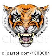 Clipart Of A Vicious Snarling Tiger Mascot Face Royalty Free Vector Illustration by AtStockIllustration