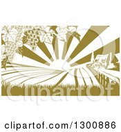 Clipart Of A Winery Farm House And Rolling Hills With Vineyard Grape Vines And Sun Rays In Green And White Royalty Free Vector Illustration by AtStockIllustration