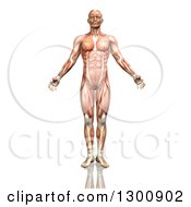Clipart Of A 3d Anatomical Male With Visible Muscle Map On White Royalty Free Illustration