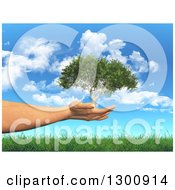 3d White Female Hand Holding A Tree In Her Hands Over Grass And Blue Sky With Clouds