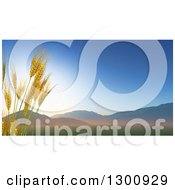 Clipart Of 3d Stalks Of Wheat Against A Valley At Sunrise Royalty Free Illustration