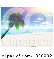 Clipart Of A 3d Tropical Beach With A Leaning Palm Tree And A Retro Sun Flare Royalty Free Illustration
