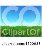 Clipart Of A 3d Background Of Green Grass Under Blue Sky Royalty Free Illustration