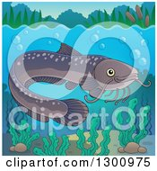 Clipart Of A Freshwater Catfish Fish In A River With Visible Surface Royalty Free Vector Illustration