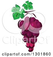 Clipart Of A Bunch Of Purple Grapes Royalty Free Vector Illustration by Vector Tradition SM