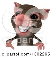 Clipart Of A 3d Mouse With Braces Pointing Down Over A Sign Royalty Free Vector Illustration