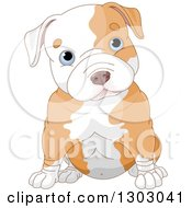 Clipart Of A Cute Blue Eyed White Ad Tan Pitbull Puppy Dog Sitting And Cocking His Head Royalty Free Vector Illustration by Pushkin