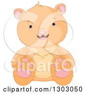 Clipart Of A Cute Sitting Bear Cub Royalty Free Vector Illustration