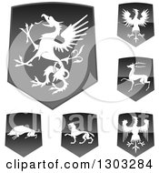 Shiny Black Shields With White Silhouetted Heraldic Animals