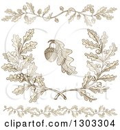 Engraved Acorn And Oak Leaf Design Elements