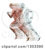 Clipart Of 3d Anatomical Muscle And White Men Running On White Royalty Free Illustration