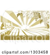 Clipart Of A Winery Cottage Farm House And Rolling Hills With Vineyard Grape Vines And Sun Rays In Green And White Royalty Free Vector Illustration