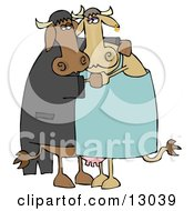 Cute Loving Cow Couple Dancing Together Clipart Illustration by Dennis Cox