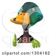 Clipart Of A 3d Gardener Mallard Drake Duck Giving A Thumb Up Over A Sign Royalty Free Illustration