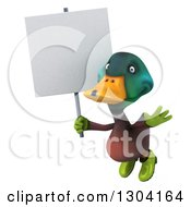 Clipart Of A 3d Gardener Mallard Drake Duck Flying With A Blank Sign Royalty Free Illustration