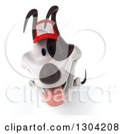 Clipart Of A 3d Happy Jack Russell Terrier Dog Wearing A Red Baseball Cap And Looking Down Over A Sign Royalty Free Illustration