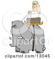 Man Riding In A Basket On An Elephant
