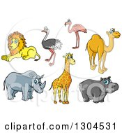 Clipart Of A Cartoon Lion Ostrich Flamingo Camel Rhino Giraffe And Hippo Royalty Free Vector Illustration by Vector Tradition SM
