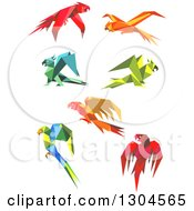 Clipart Of Origami Paper Parrots 4 Royalty Free Vector Illustration