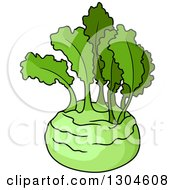Clipart Of A Lush Green Kohlrabi Royalty Free Vector Illustration by Vector Tradition SM