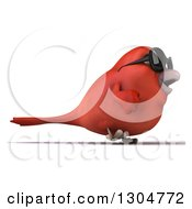 Clipart Of A 3d Red Bird Wearing Sunglasses And Walking To The Right Royalty Free Illustration
