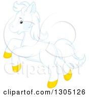 Happy White Horse Pony Rearing
