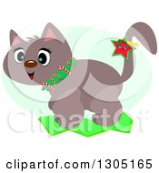 Happy Christmas Cat With A Star And Candy Cane Collar