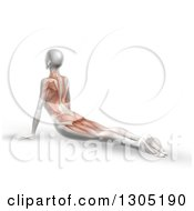 Clipart Of A 3d Anatomical Woman Stretching On The Floor In A Yoga Pose With Visible Muscles Royalty Free Illustration