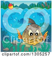 Clipart Of A Carnivorous Piranha Fish Underwater With A Hook And Visible Surface Royalty Free Vector Illustration by visekart