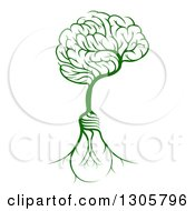 Clipart Of A Green Tree With Electric Light Bulb Roots And A Brain Canopy Royalty Free Vector Illustration by AtStockIllustration