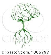 Clipart Of A Green Tree With A Big Brain Canopy And Roots Royalty Free Vector Illustration