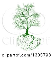 Clipart Of A Bare Green Tree With Brain Roots Royalty Free Vector Illustration by AtStockIllustration
