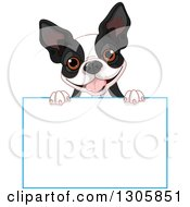 Cute Boston Terrier Or French Bulldog Looking Over A Blank Sign