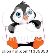 Clipart Of A Cute Baby Penguin Sitting And Holding A Blank Sign Royalty Free Vector Illustration