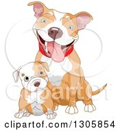 Clipart Of A Cute Blue Eyed White Ad Tan Pitbull Puppy Dog Sitting In Front Of Its Mom Royalty Free Vector Illustration