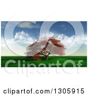 Clipart Of A 3d Large Autumn Maple Tree In A Flat Grassy Meadow Royalty Free Illustration by KJ Pargeter