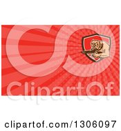 Clipart Of A Retro Woodcut Vicious Grizzly Bear Attacking And Red Rays Background Or Business Card Design Royalty Free Illustration