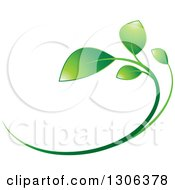 Clipart Of A Gradient Green Young Plant Design Royalty Free Vector Illustration by Lal Perera
