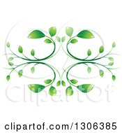 Clipart Of A Graident Green Vine Design Royalty Free Vector Illustration