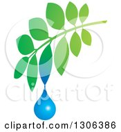 Clipart Of A Gradient Green Branch With A Water Drop Royalty Free Vector Illustration