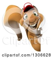 Clipart Of A 3d Squirrel Wearing A Baseball Cap And Looking Around A Sign Royalty Free Illustration