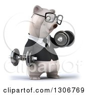 Clipart Of A 3d Bespectacled Happy Business Polar Bear Facing Slightly Right And Doing Bicep Curls With Dumbbells Royalty Free Illustration
